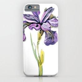 Iris showy flowers rainbow goddess rainbow colors species iPhone Case