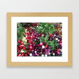 Garden Radishes Framed Art Print