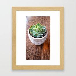 cactus phone case Framed Art Print