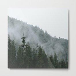 fog Metal Print
