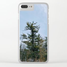 Lonely tree in the forest Clear iPhone Case