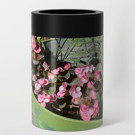Sun kissed Garden Angel and Begonias Can Cooler