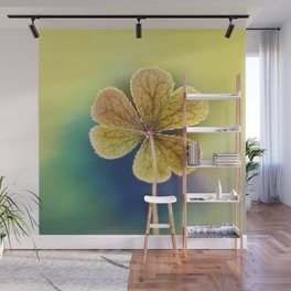 Heart-shaped Clover Oxalis Macro. St Patrick's Day Wall Mural