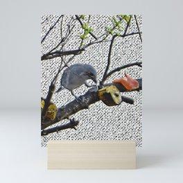 bird gray sanhaço Mini Art Print