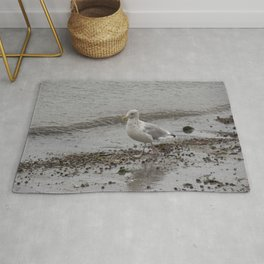Seagull on the Coast of Rockland, Maine. Rug