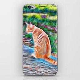 Orange cat sitting on a path in rural Queensland, Australia iPhone Skin