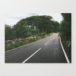 Roads of Dartmoor Canvas Print