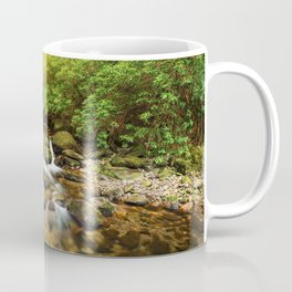 Stream under Torc Waterfall Coffee Mug