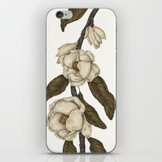 Magnolias Branch iPhone & iPod Skin