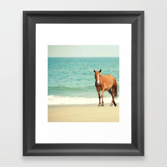 Wild Mustang of Carova, NC Framed Art Print