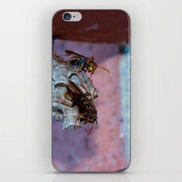 Paper Wasps Gaurding iPhone Skin