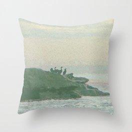 Shorebirds on Rocks Throw Pillow