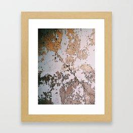 Abandoned Hospital, Great Diamond Island, ME Framed Art Print