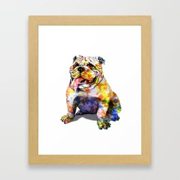 Color bull Framed Art Print