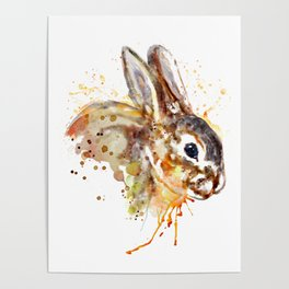 Mr. Bunny Poster