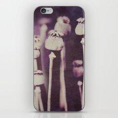 What you seek is seeking you ~ Rumi iPhone & iPod Skin