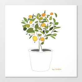 Orange tree in pot Canvas Print