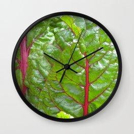 swiss chard Wall Clock