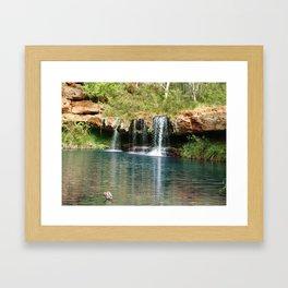 Fern Pool Framed Art Print
