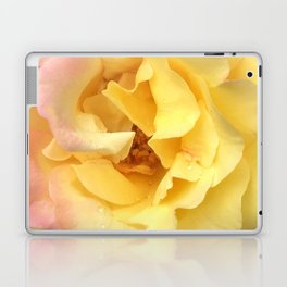 Summer Rose in Pink and Yellow Laptop & iPad Skin