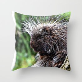 toony New World porcupines ( Erethizontidae) Throw Pillow