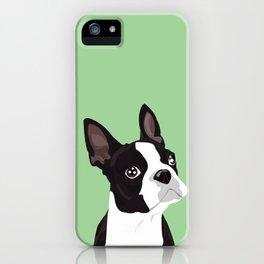 Boston Terrier Portrait - Green iPhone Case