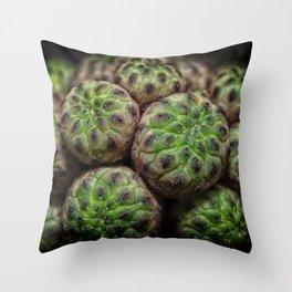 Cactus Succulent Plant Throw Pillow