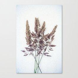 Velvet Grass Canvas Print