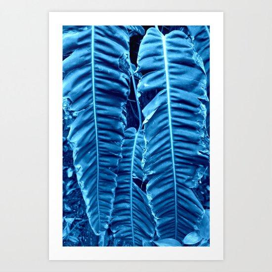 blue rainforest Art Print
