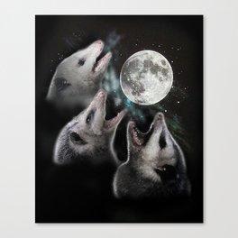 3 opossum moon Canvas Print