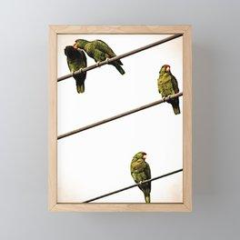 Parroting Up Framed Mini Art Print