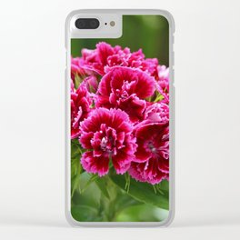 Deep Pink Turkish Carnation Flower 1 Clear iPhone Case