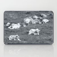 cows iPad Cases featuring Cows by Mr and Mrs Quirynen