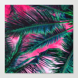 Tropical Summer Pink White Gradient Sky Teal green Palm Tree Leaves Canvas Print