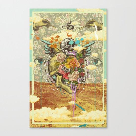 CANYON VISIONS Canvas Print