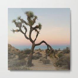 Desert Sunset Colors Metal Print