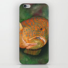 Coral Grouper iPhone Skin