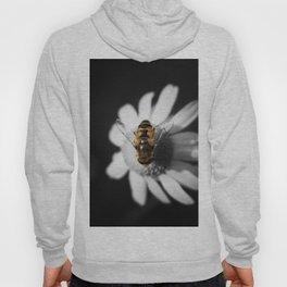 a Bee on a daisy flower Hoody