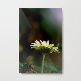 tall yellow flower Metal Print