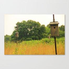 Field of Possibilites Canvas Print