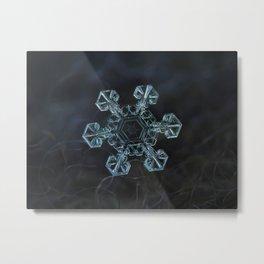 Real snowflake - Ice crown Metal Print
