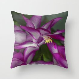 Christmas Cactus Flowers Throw Pillow