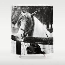 Extraordinary Black & White Shower Curtain