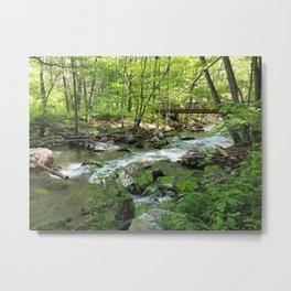 Virginia in Spring Metal Print