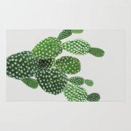 Cactus II Rug