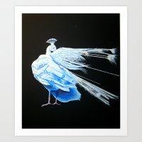 Albino Peacock 2 Art Print