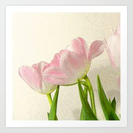 Posterised petals Art Print