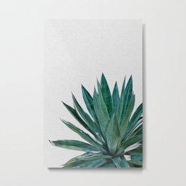 Agave Cactus Metal Print