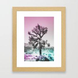 Joshua Tree - Ultraviolet Framed Art Print