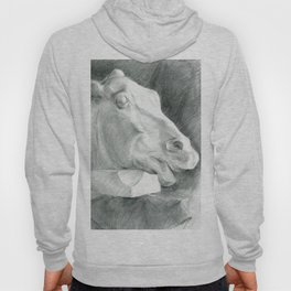 Portrait of a sculptural head of a horse, drawing with a graphite pencil Hoody
